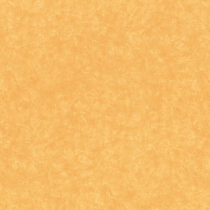 4745 MAROOCHY BRUSH