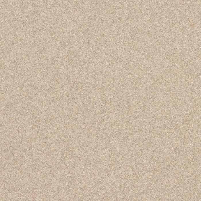 4841 DESERT ZEPHYR
