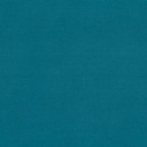 4919 BLUE AGAVE
